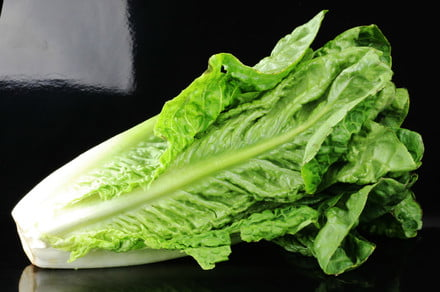 Ditch all romaine lettuce and check your eggs — a bad week for food recalls